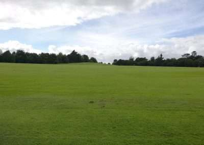large green lawn