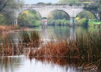 Ballytiglea Bridge over river Barrow on a grey day