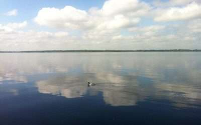 List of Fermanagh Boat Tours