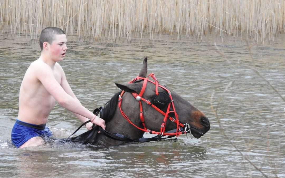 Mincéir Men & Horses at Kellyville