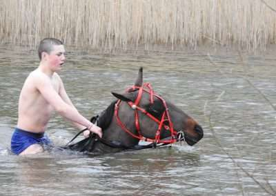 Young man riding a horse through Kellyville Lake, county Laois
