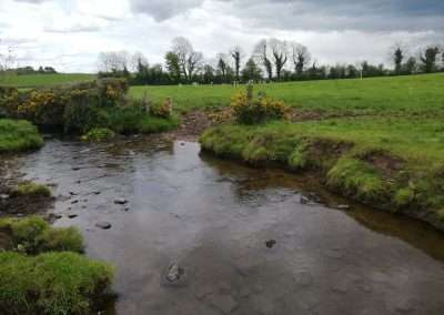 River Nore flowing through agricultural land at Clonakenny, county Tipperary